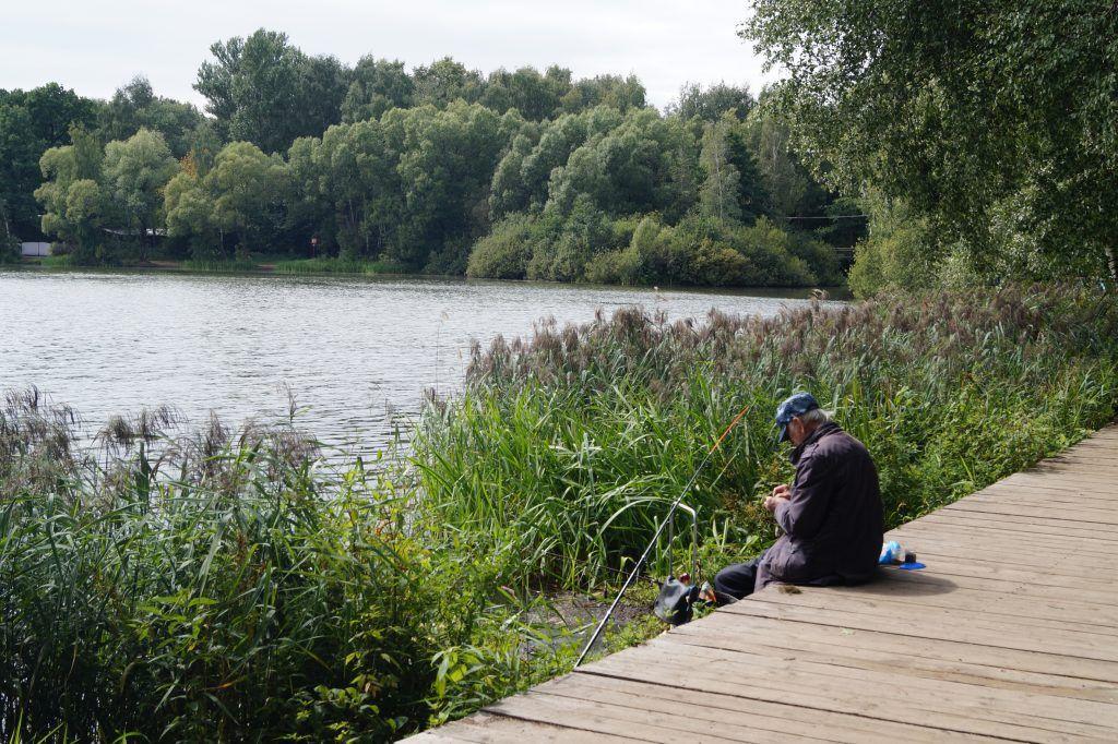 Рыбак, парк Косино, пруд, удочка