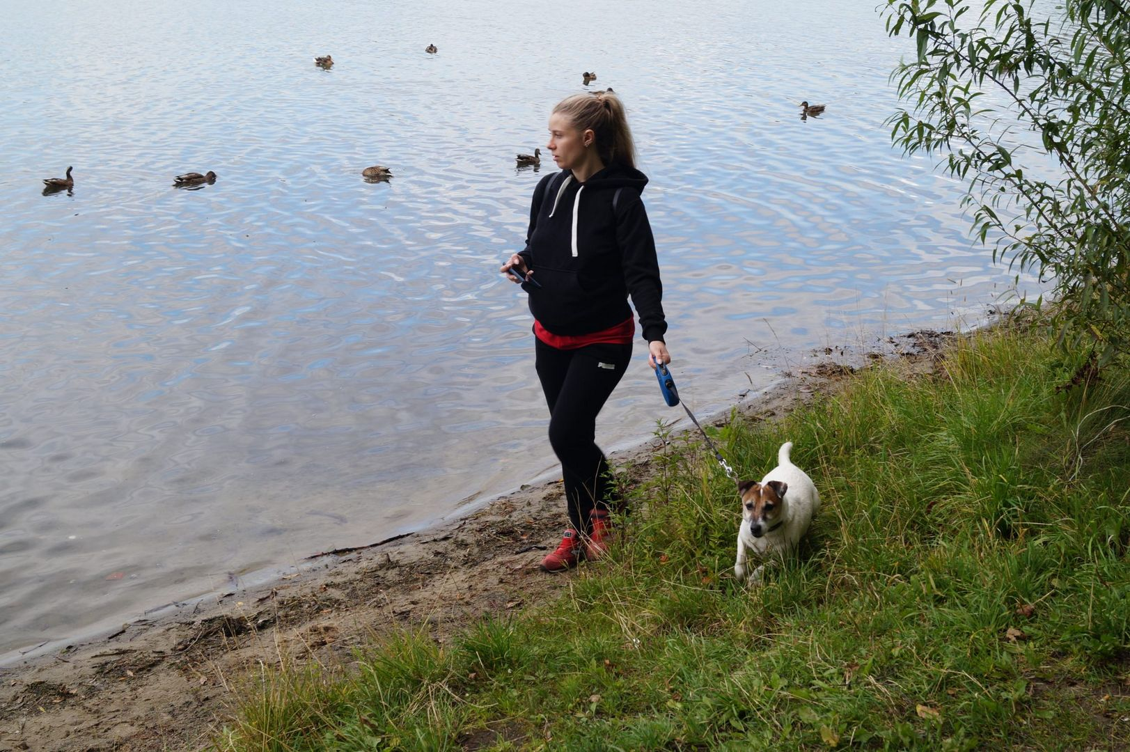 Прогулка с собакой, парк Косино, пруд, собака