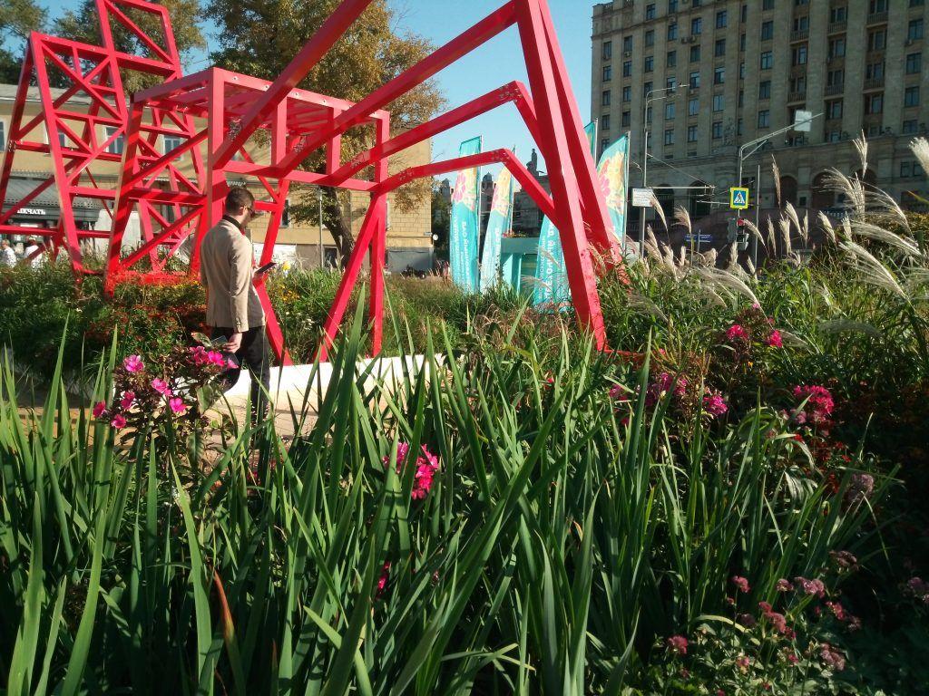 «Красный сад» возле метро Баррикадная, цветочный джем, цветники