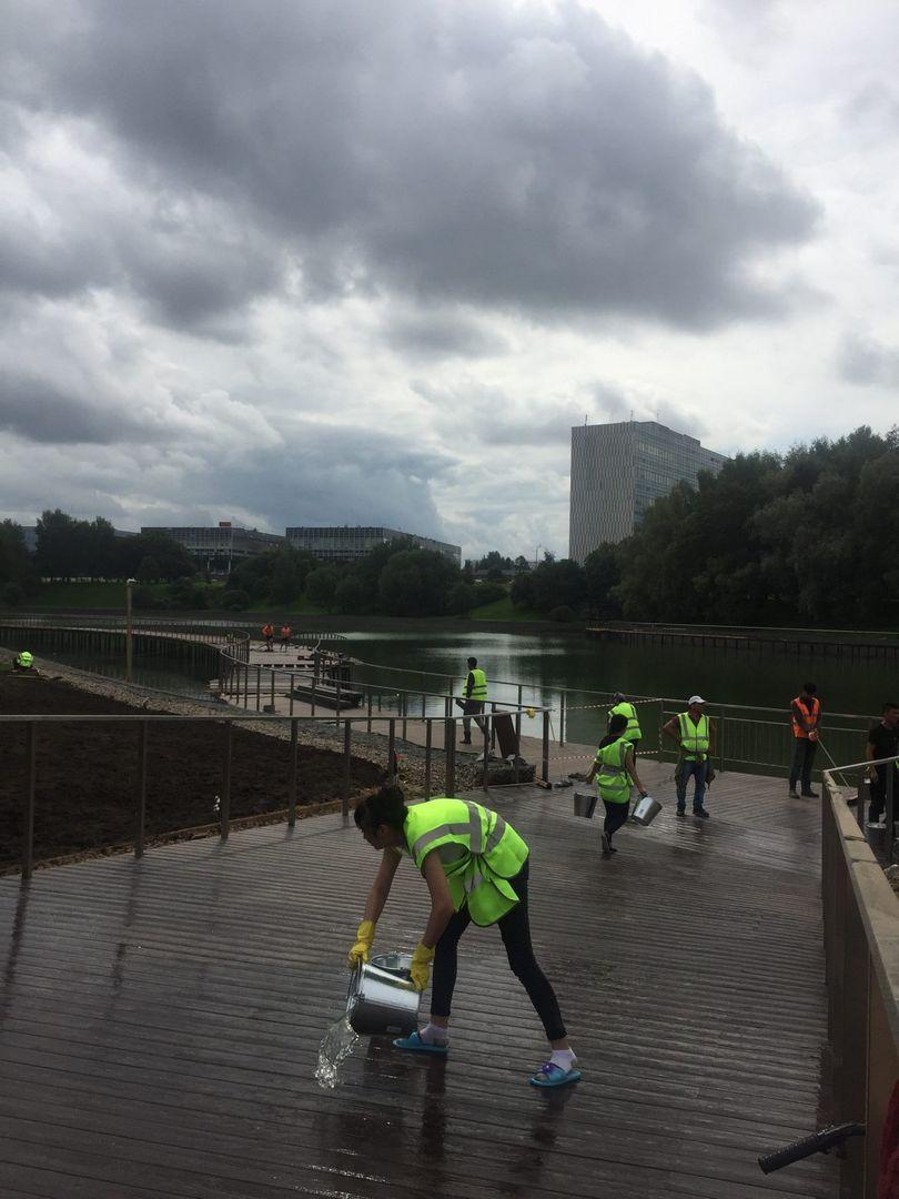 ЗелАО, парк Победы, благоустройство, озеленение
