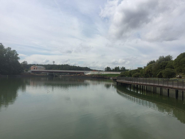 ЗелАО, парк Победы, благоустройство,пруд
