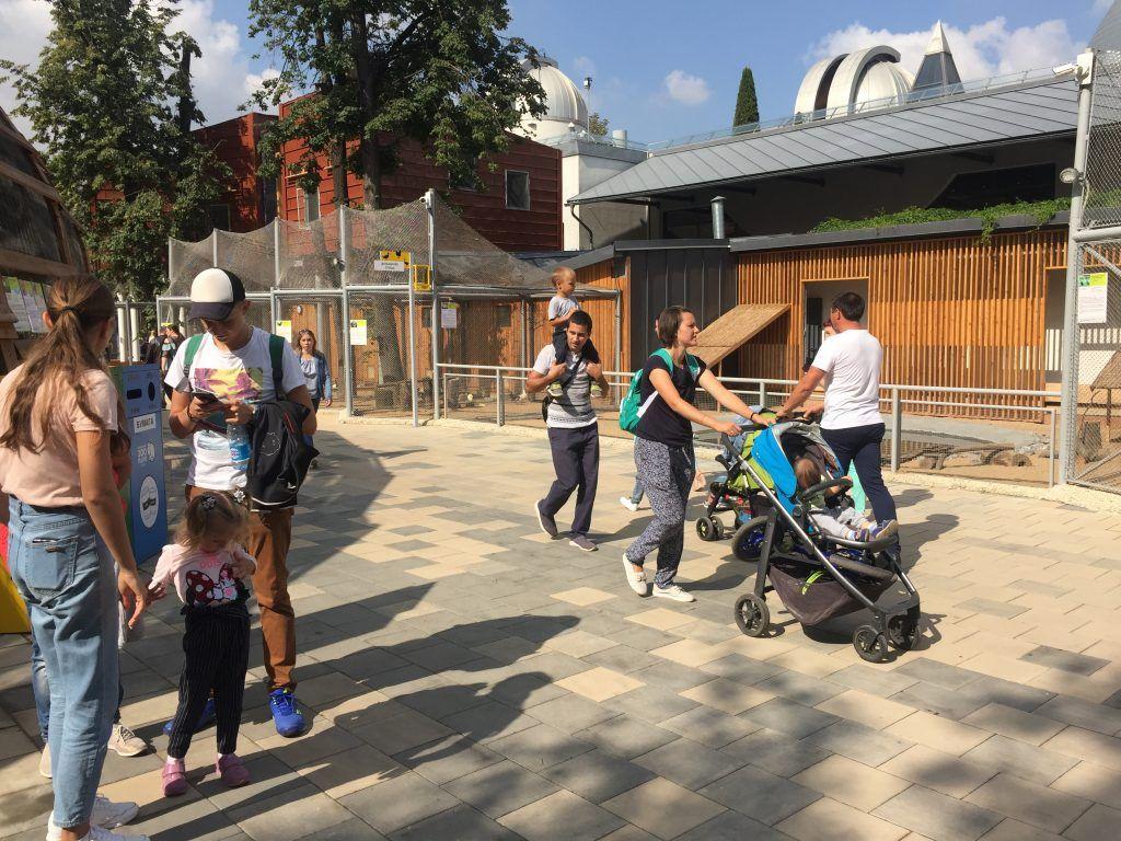 детский зоопарк, благоустройство