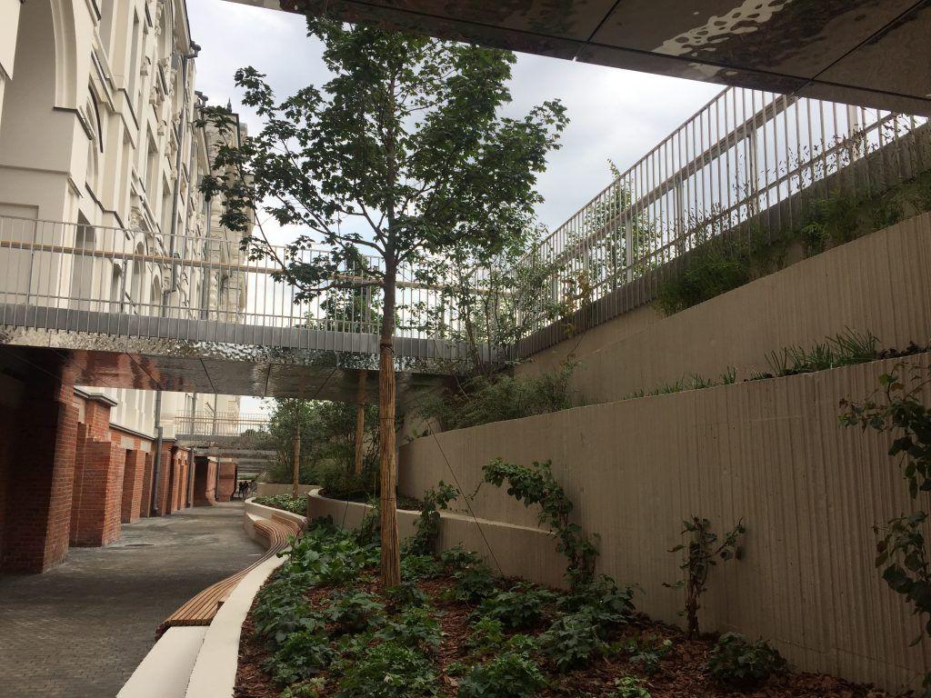 пешеходная зона, благоустройство, Политех, озеленение