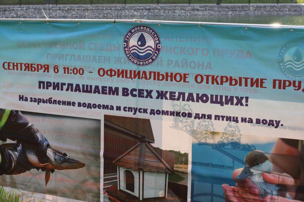 Дегунинский пруд, благоустройство, Западное Дегунино, зарыбление