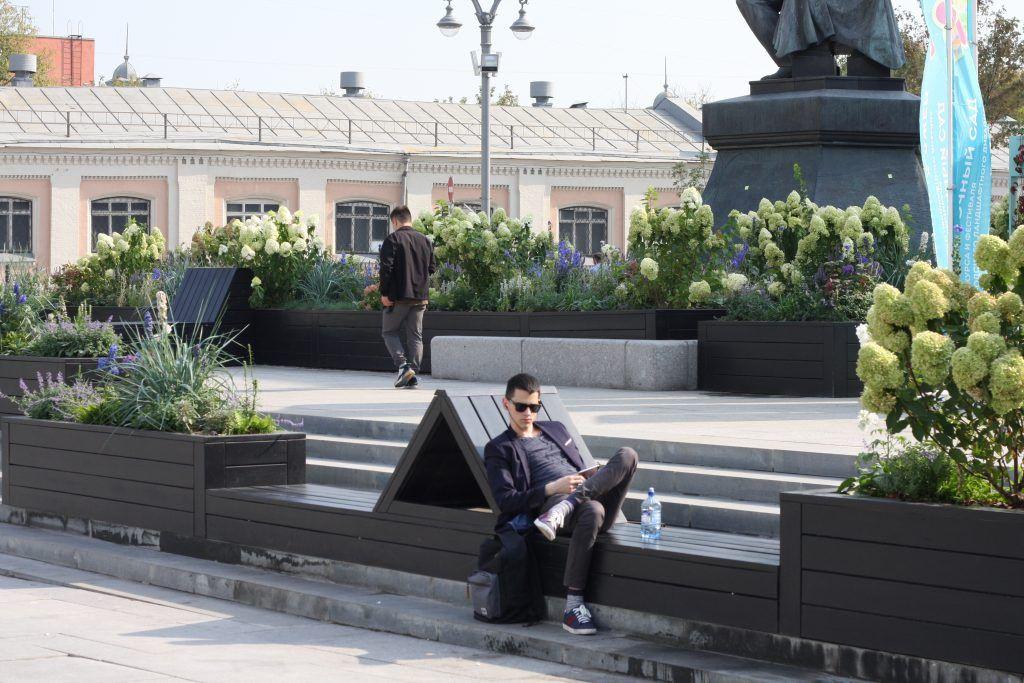 благоустройство, библиотека имени Ленина, цветники