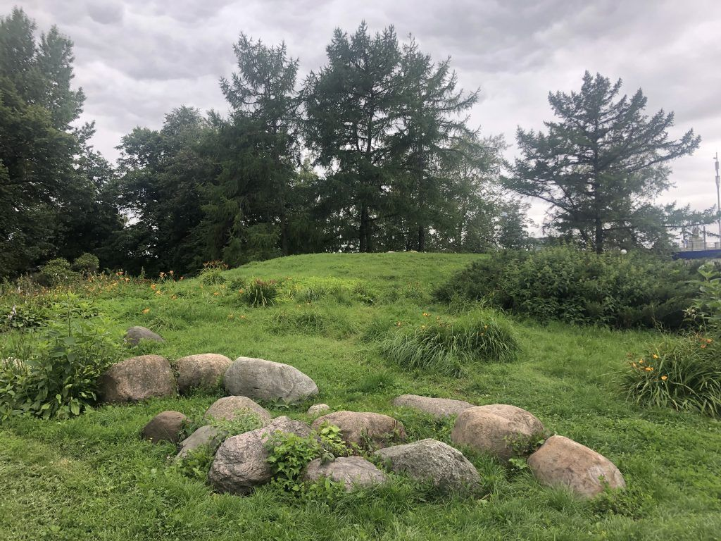 Новодевичьи пруды, цветы, деревья, камни