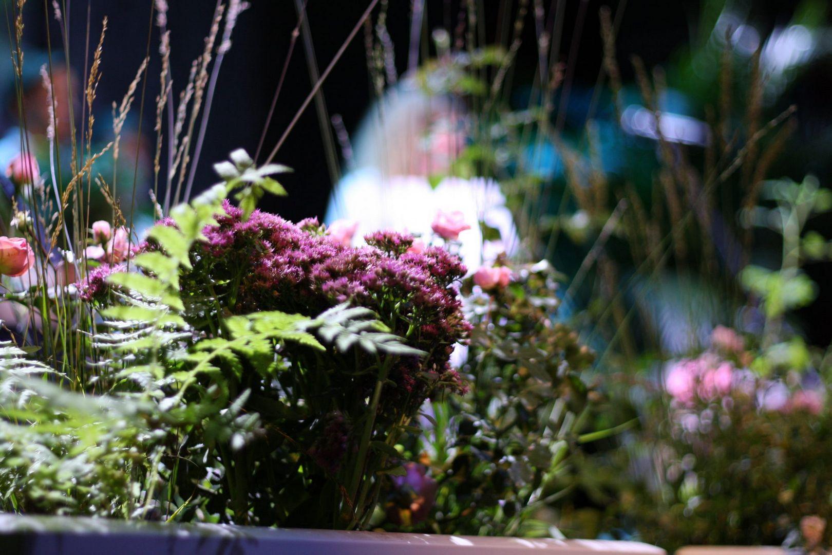 цветочный джем, итоги
