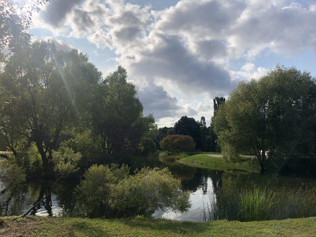 пруд, главный ботанический сад