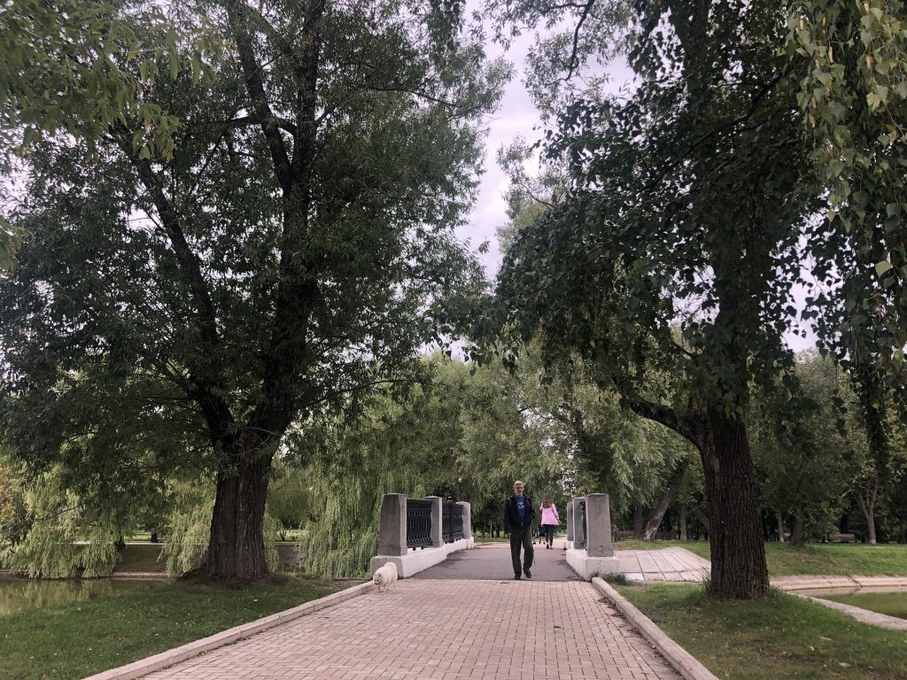 Новодевичьи пруды, мостик, парки Москвы