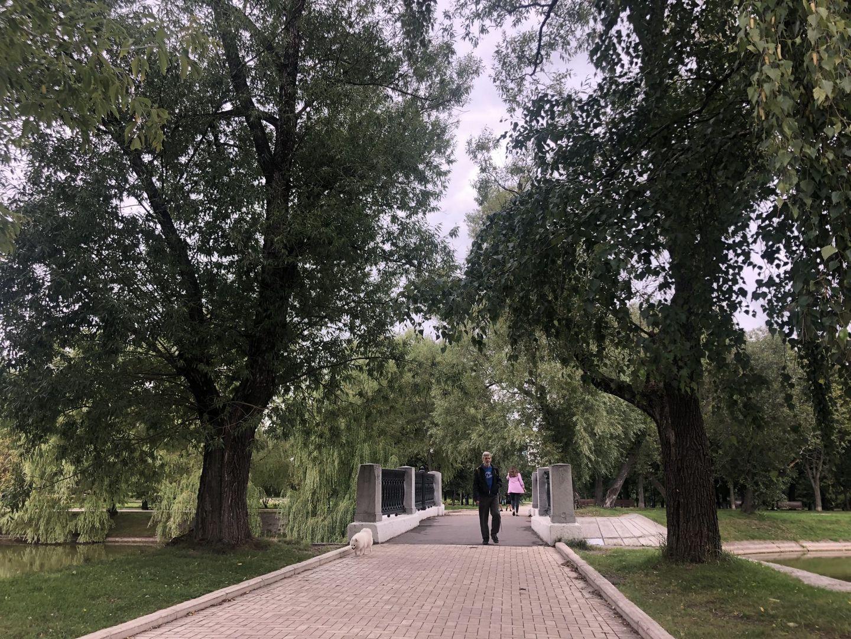 Мостик в парке «Новодевичьи пруды»