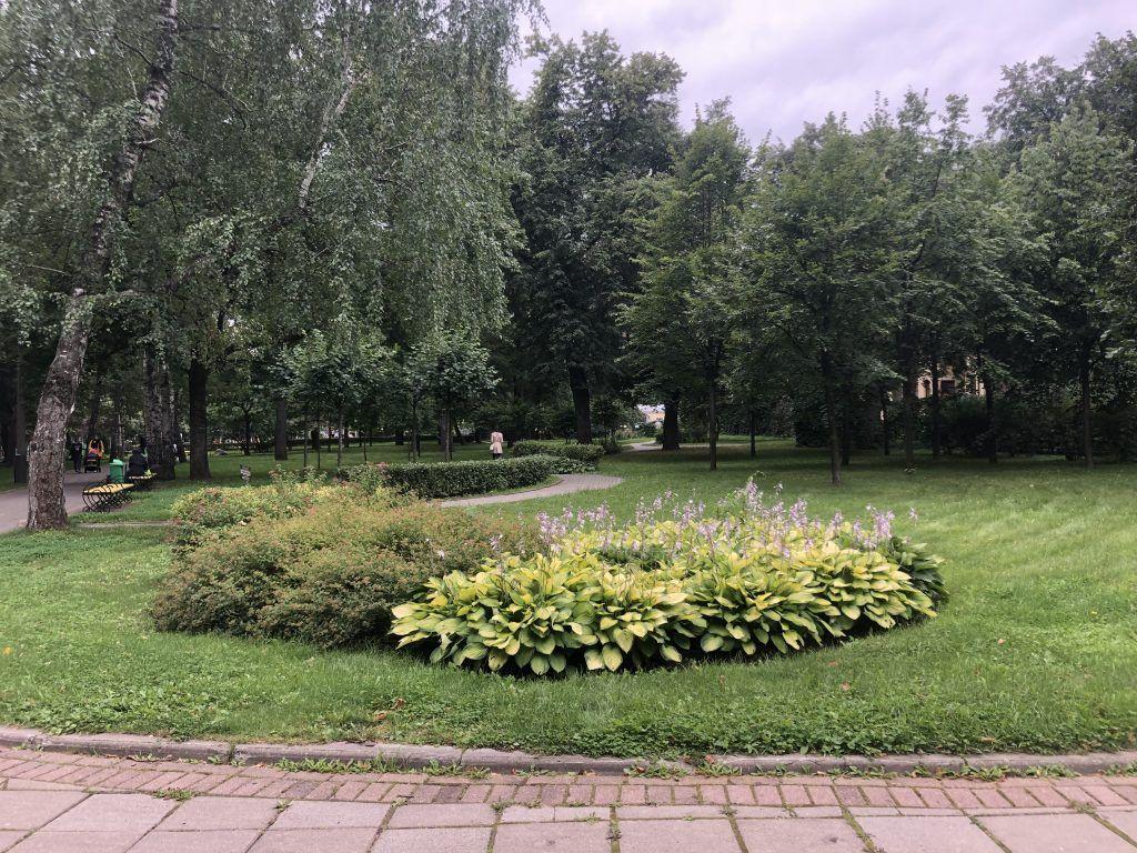 парк, Усадьба Трубецких в Хамовниках, клумба
