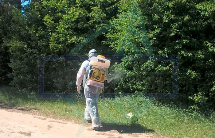 Сотрудники Роспотребнадзора каждую весну обрабатываю специальными противоклещевыми репелентами районы, где клещ наиболее распространен.