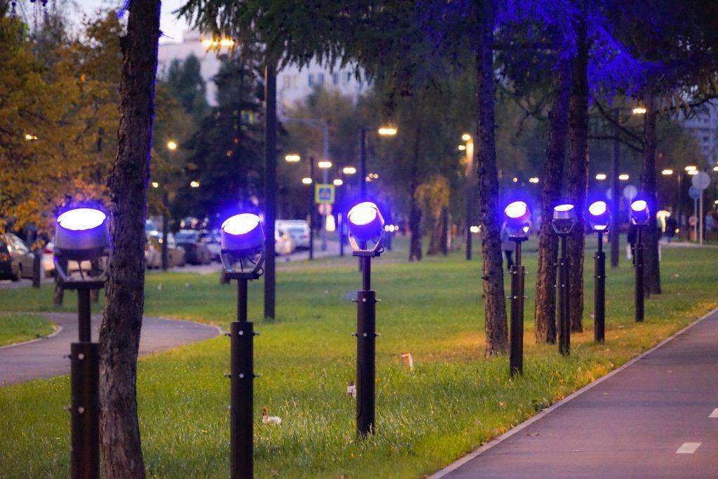 парк Света, парки Москвы, благоустройство, СВАО