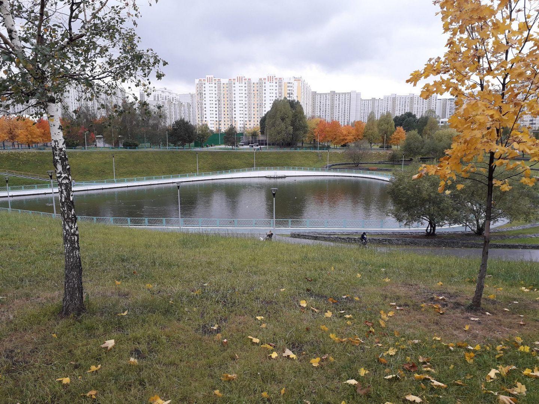 благоустройство, пруд, Дюссельдорфский парк, Марьино