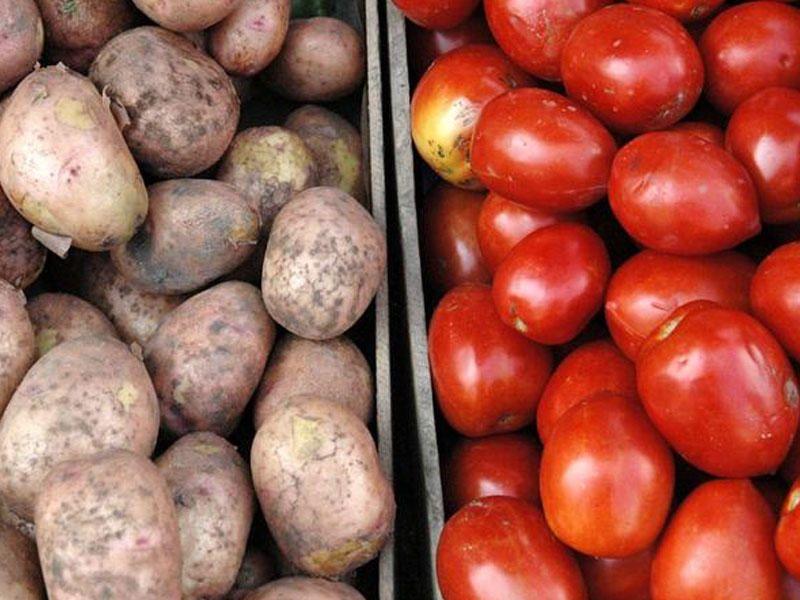 картофель, томаты