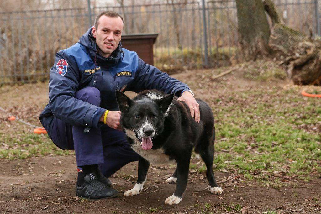 собака, спасатели, Строгино