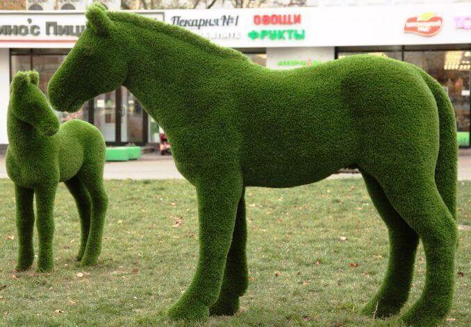 благоустройство,лошадь,Западное Дегунино