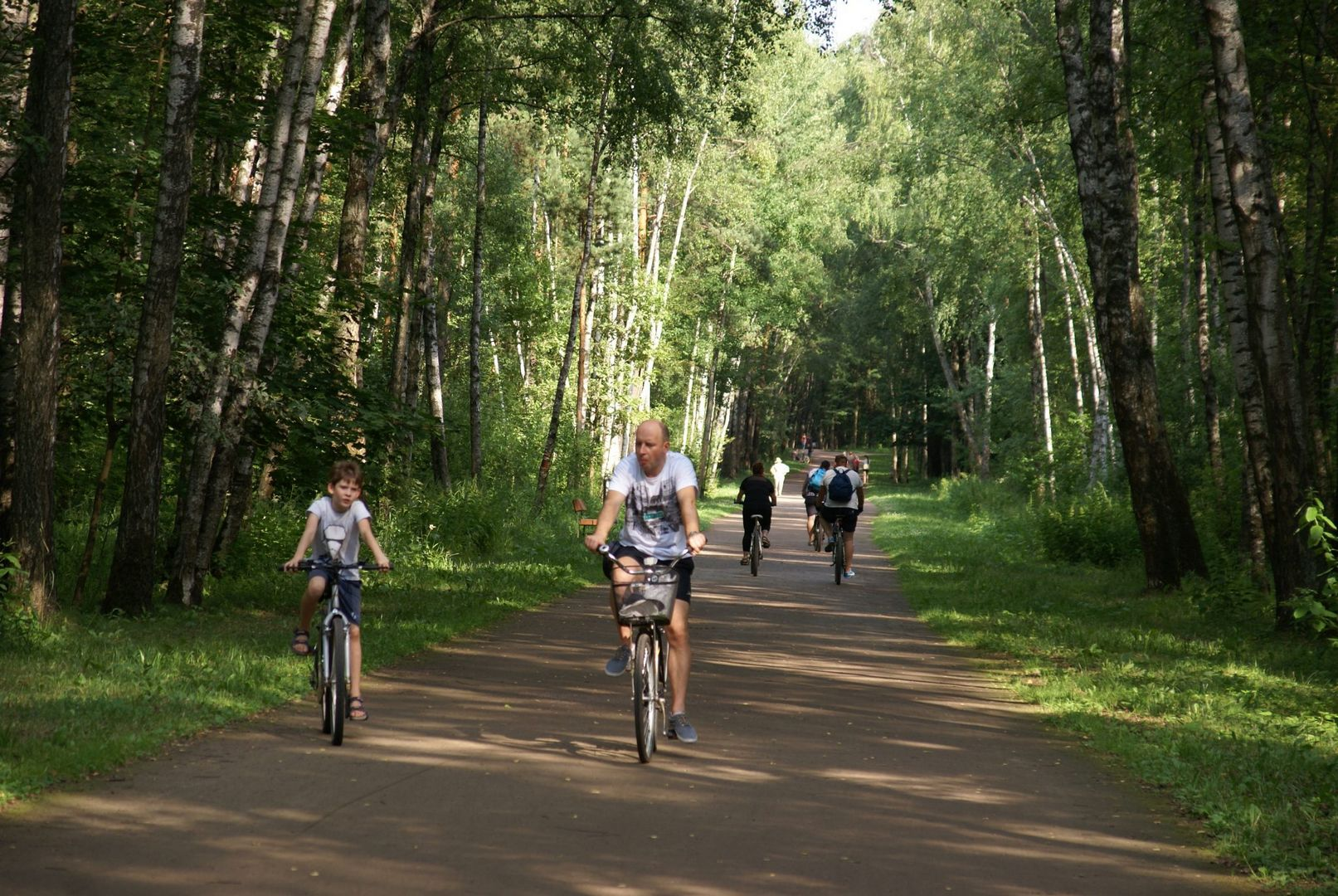 Организация велосипедных маршрутов в городских парках