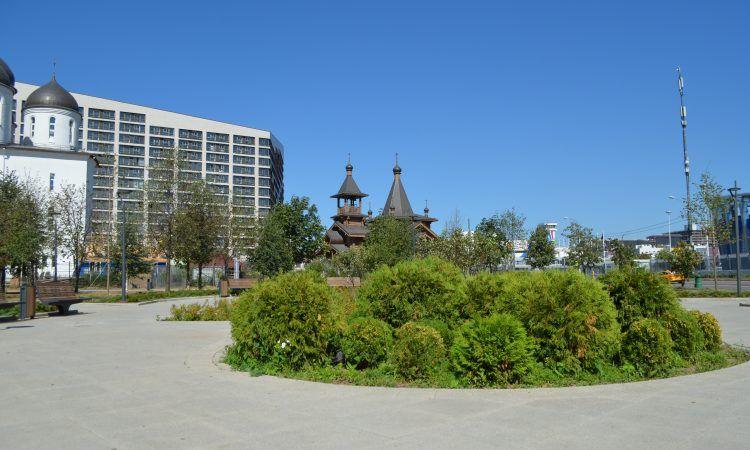 1,5 тысяч деревьев посадили в парке на Ходынском поле