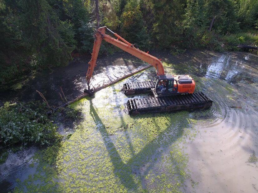 река, лес, очистка реки