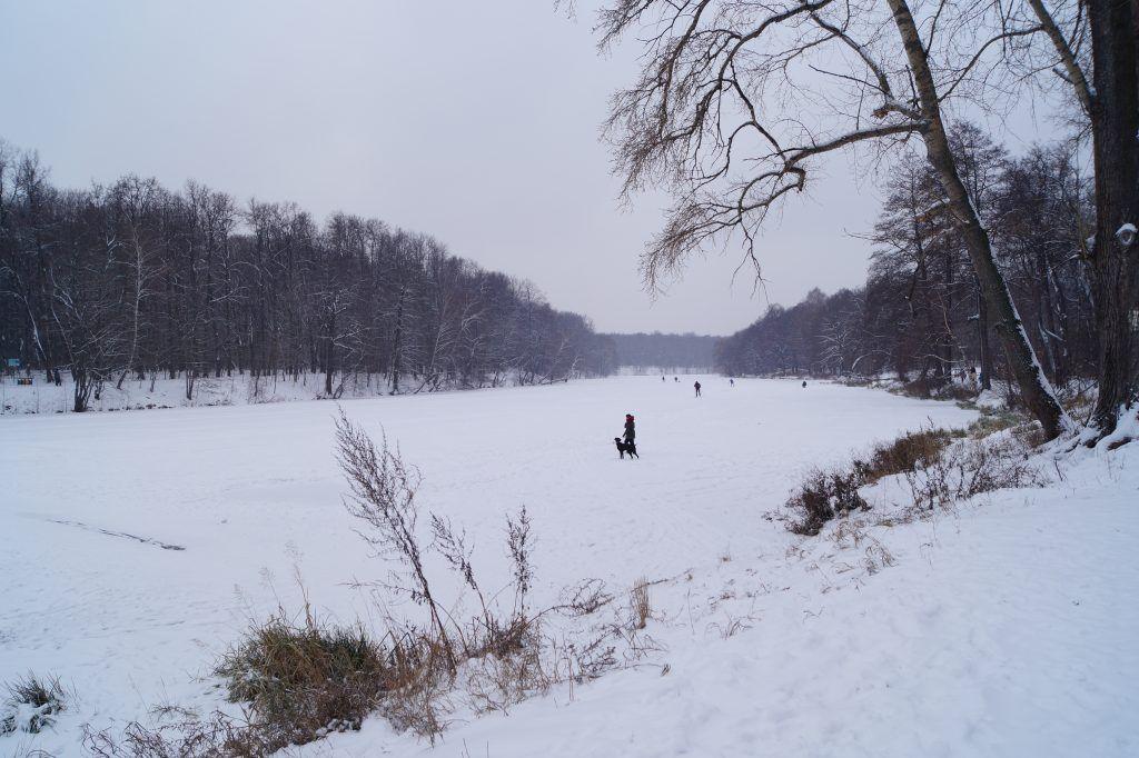 Прогуливающиеся по льду