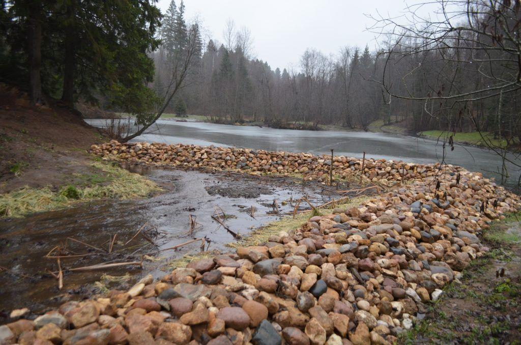 лес, мусор, очистка от мусора, река, река Банька, Павшино, Красногорск