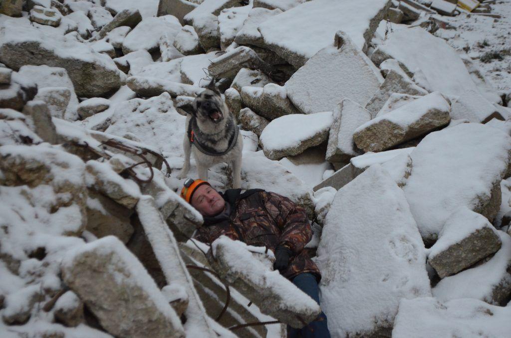 кинологи, собака, спасатели