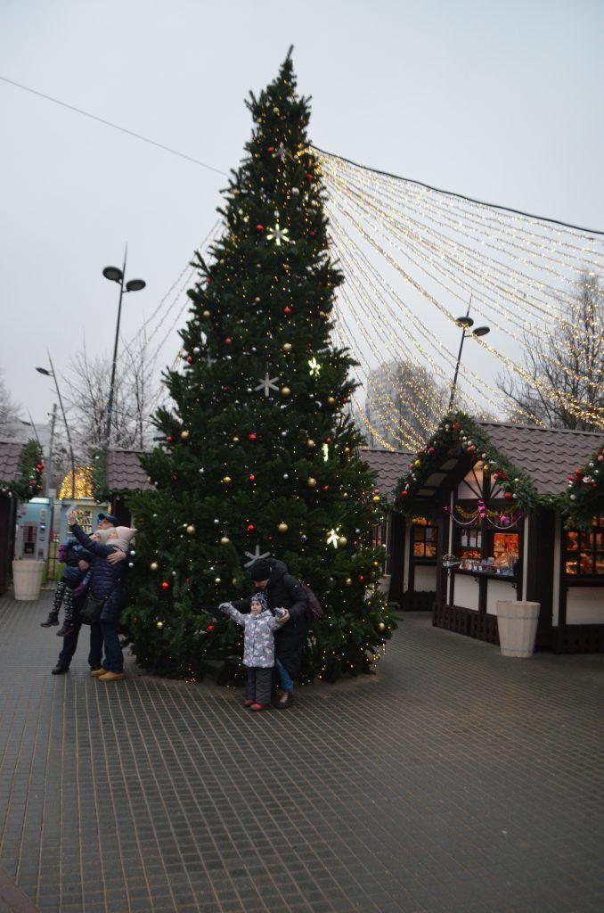 Лианозовский парк, новый год, украшение Москвы, парки Москвы, елка