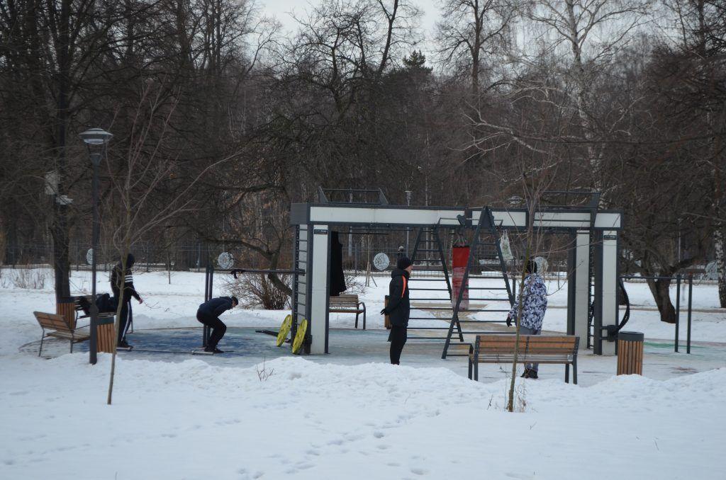Сад будущего, СВАО, парки Москвы, парк Леоново