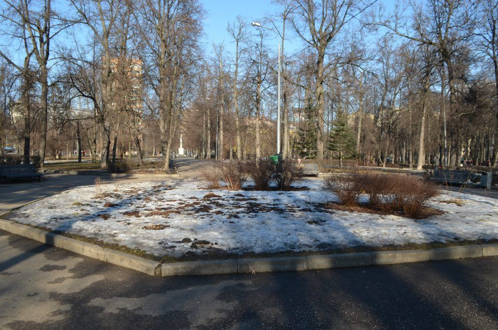 парк,аллеи, цветник