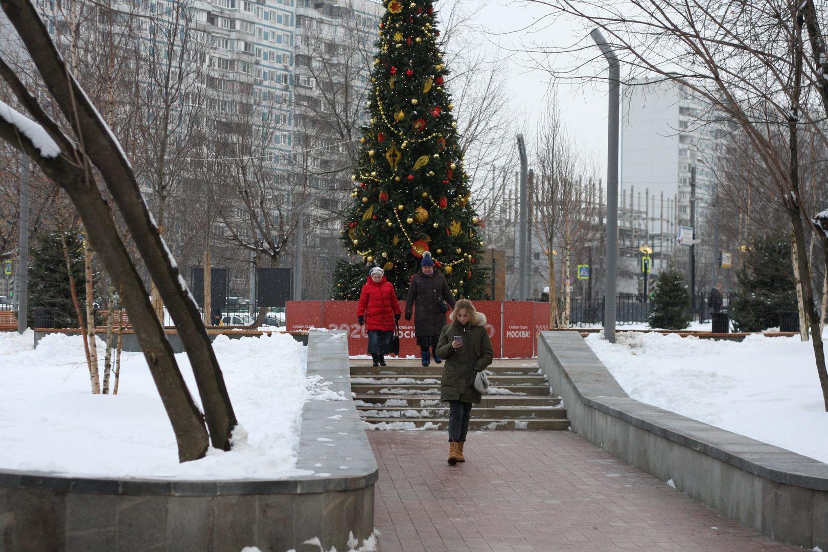 сквер, зима
