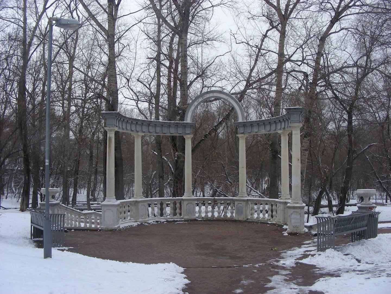 Олонецкий парк, лес, природа