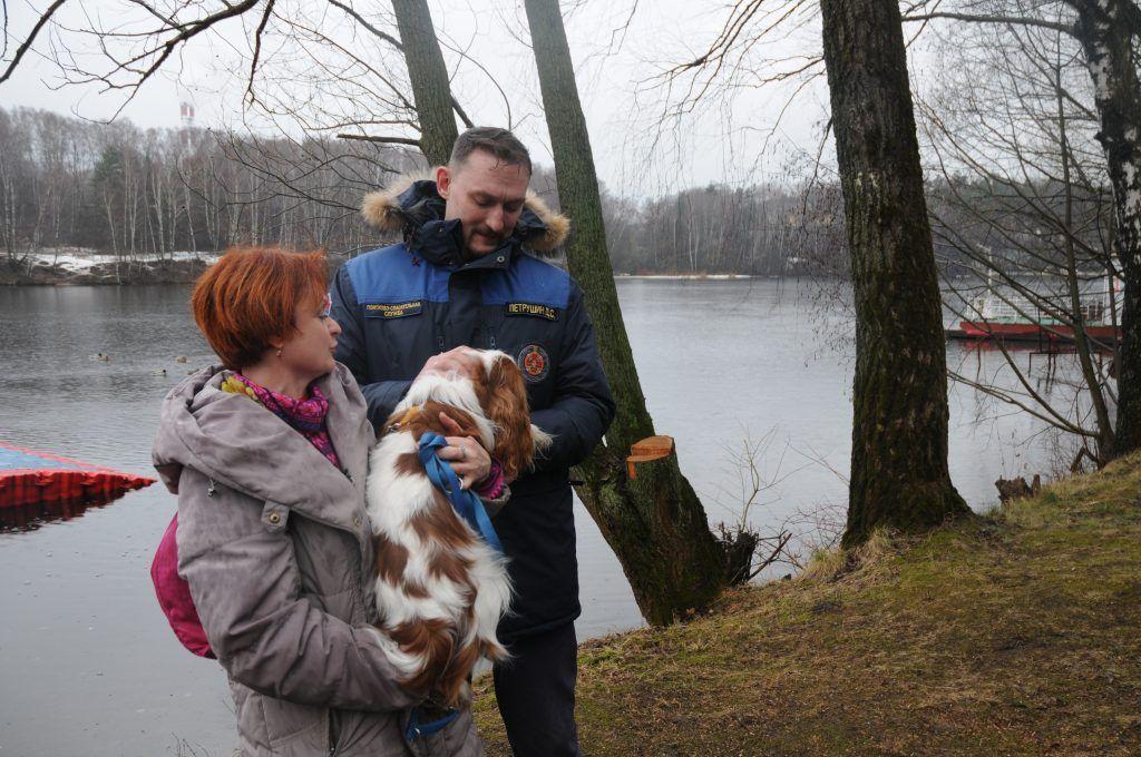 спасатели, собака