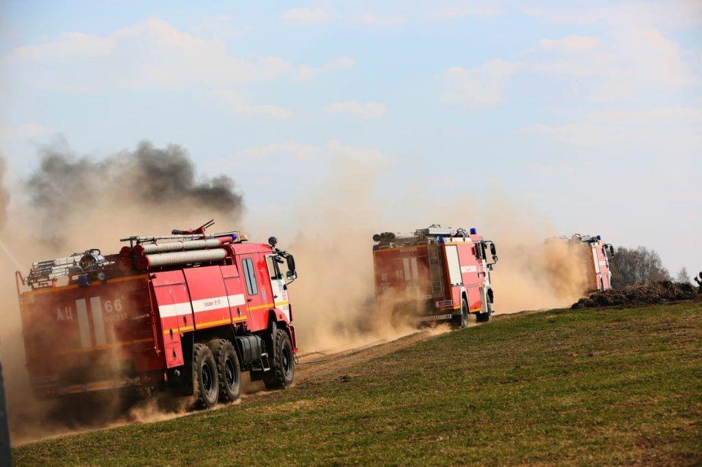 Для ликвидации очагов возгорания в лесных массивах задействованы сотни единиц специальной техники и личного состава.
