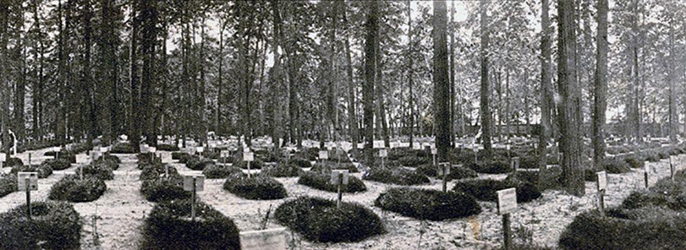 Братское кладбище героев Первой мировой войны на Соколе, 1915. Фото: https://pastvu.com
