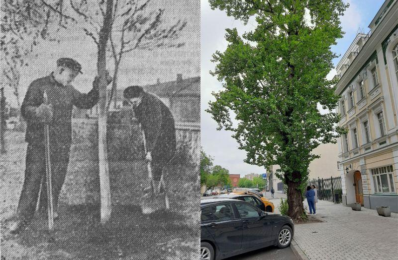 30 мая 1945 года. Фото Н. Семенов 30 мая 2020 года. Фото А. Ширяевой