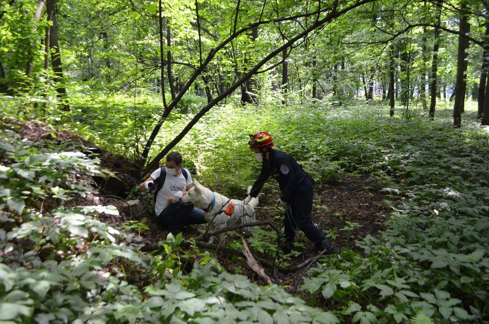 Даня нашел спрятавшегося в лесу журналиста, хоть и пришлось немного побегать.