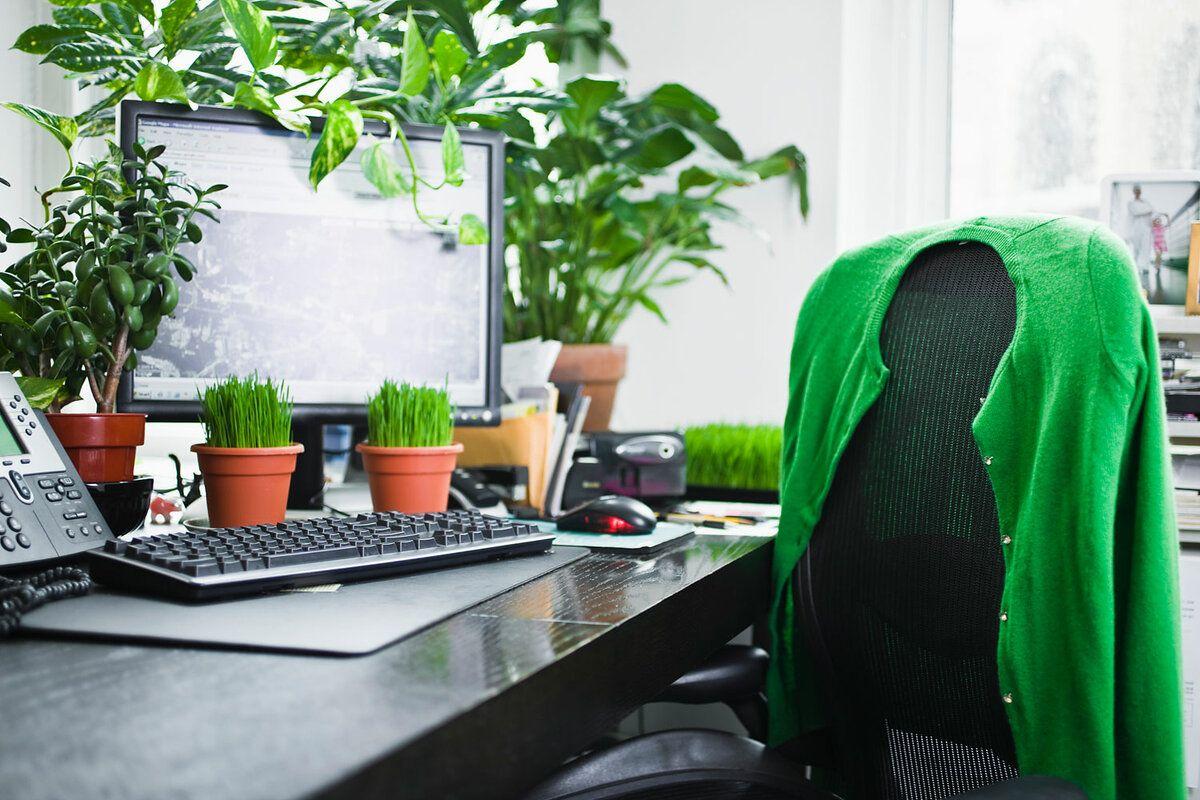 Экологичное рабочее место