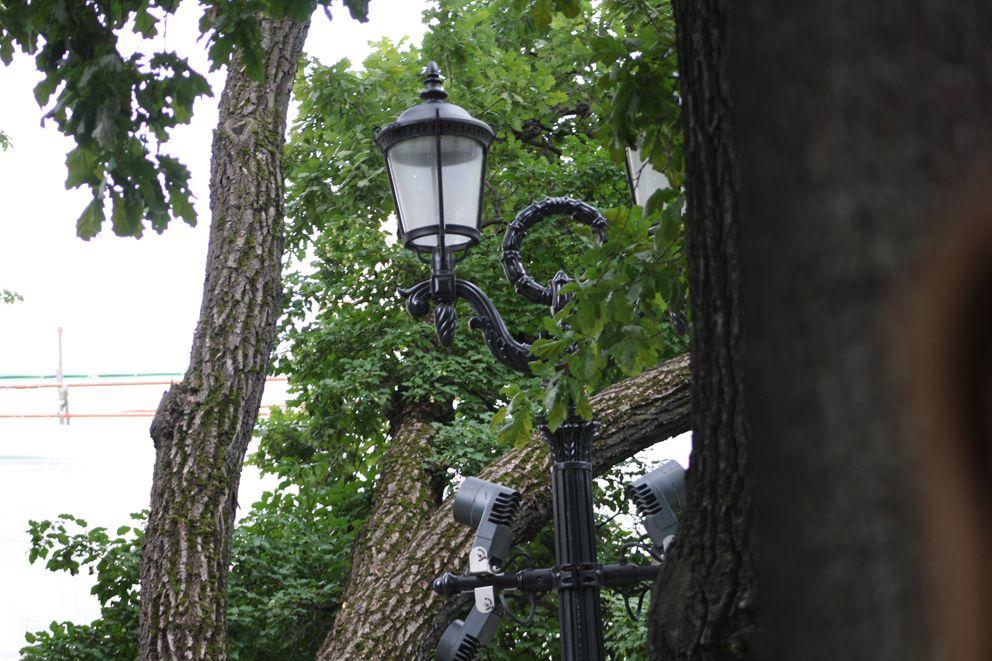 парк, деревья, тверской бульвар, фонарь