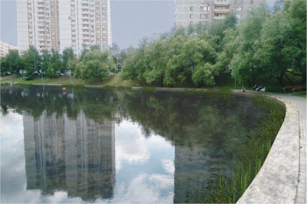 Коньковский пруд, дизайн-проект
