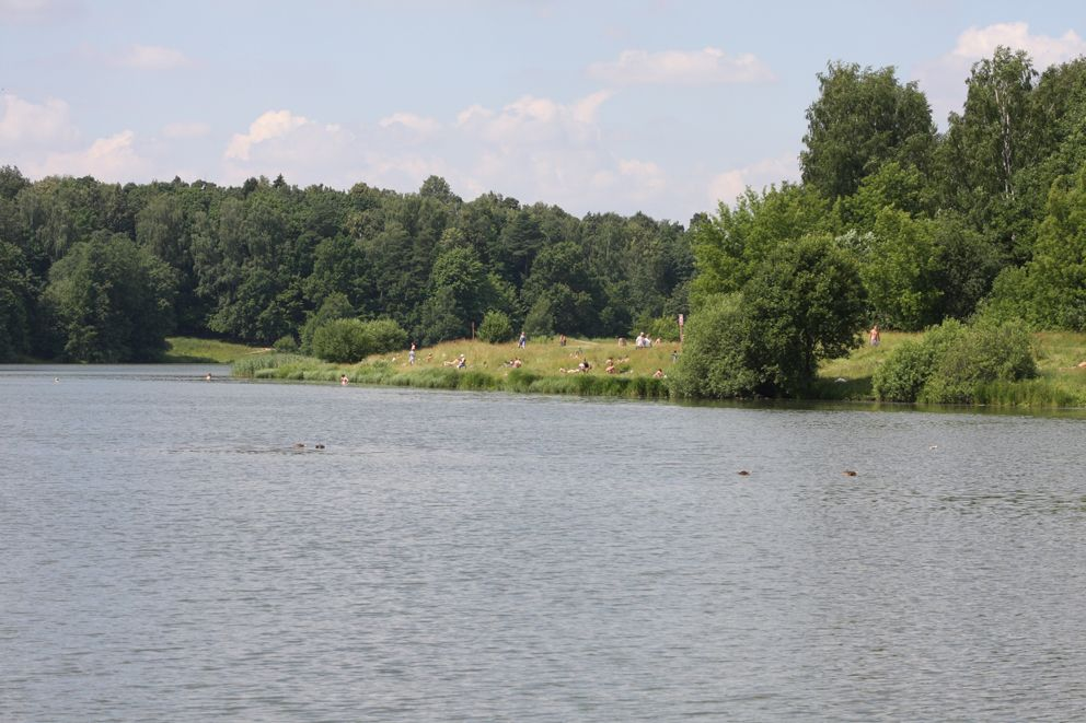 Лебедянский пруд