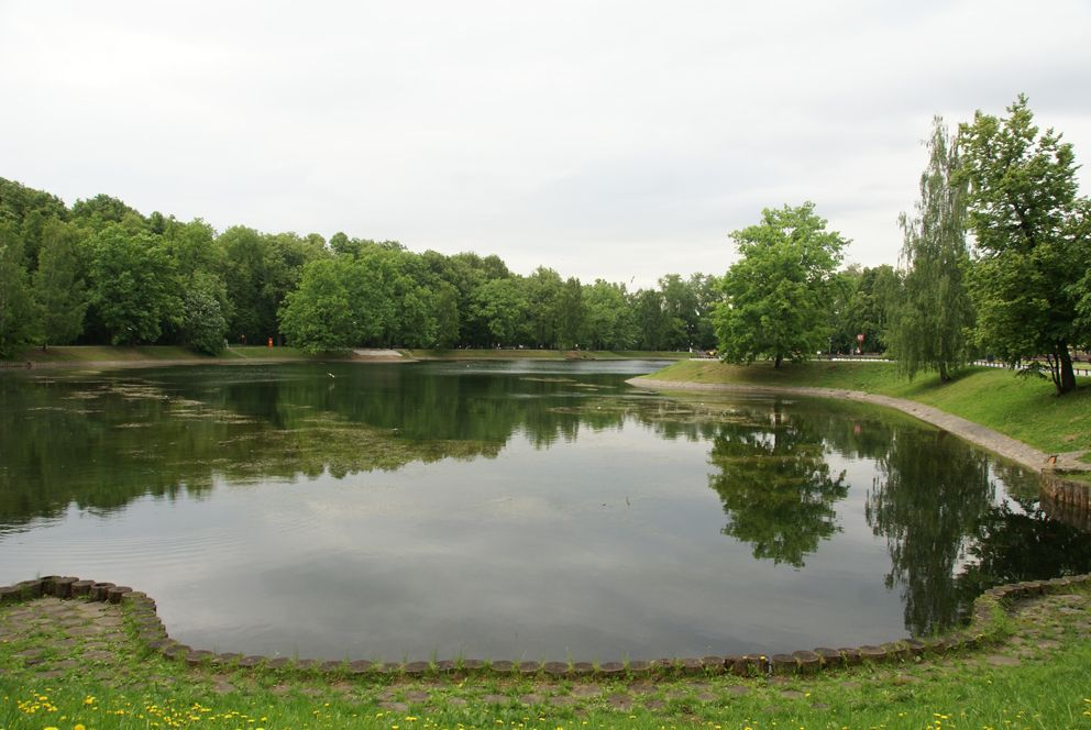 Парковый пруд в Останкинском парке