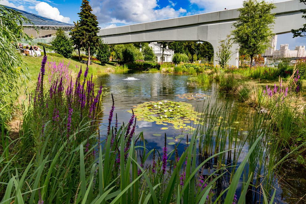 Зарядье, цветы, мост, пруды