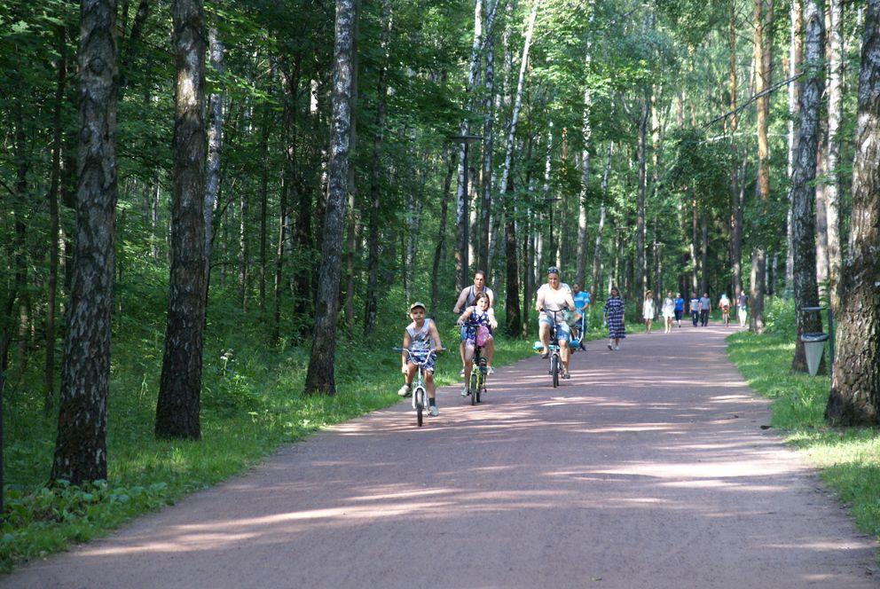 На велосипеде по Мещерскому парку