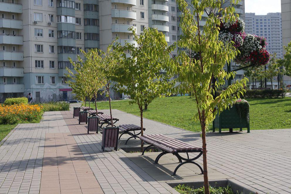 Скамейки в парке 70-ти летия Победы ВОВ