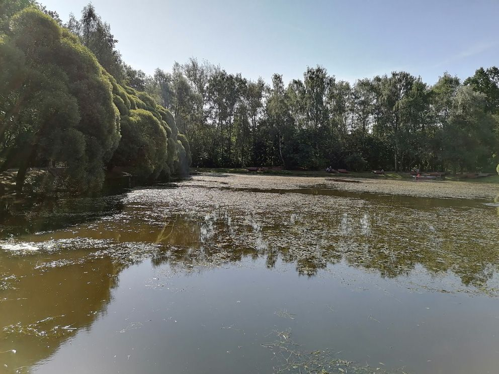 ГУП Мосводосток, очистка пруда, парк Фили, пруд
