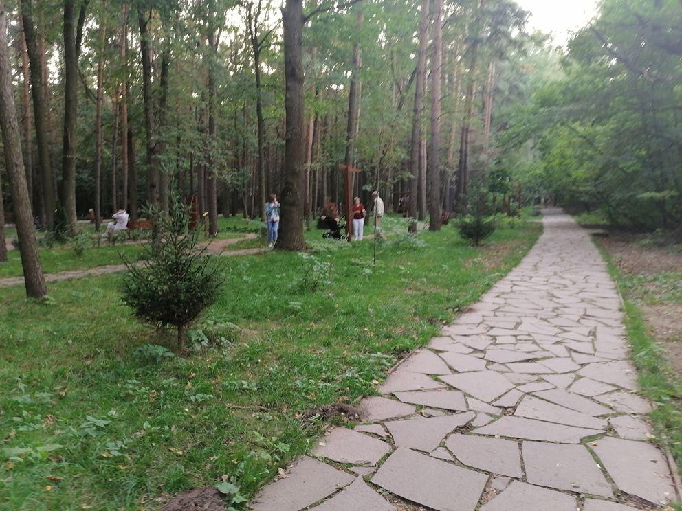 Бирюлевский лесопарк, сад здоровья