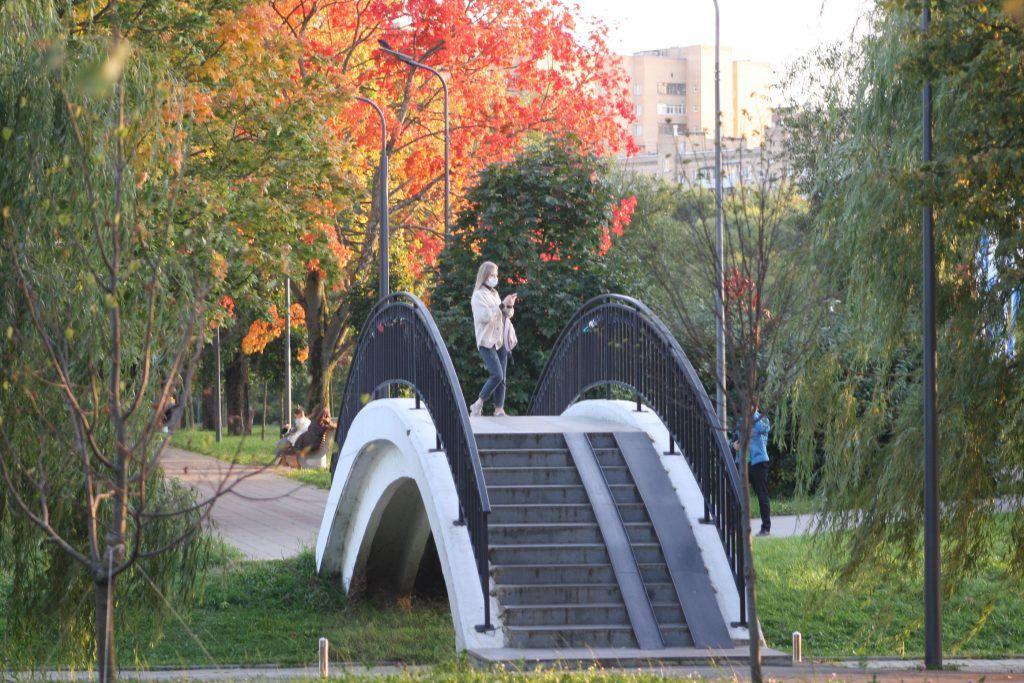 парк Дружбы, осень, деревья, мост