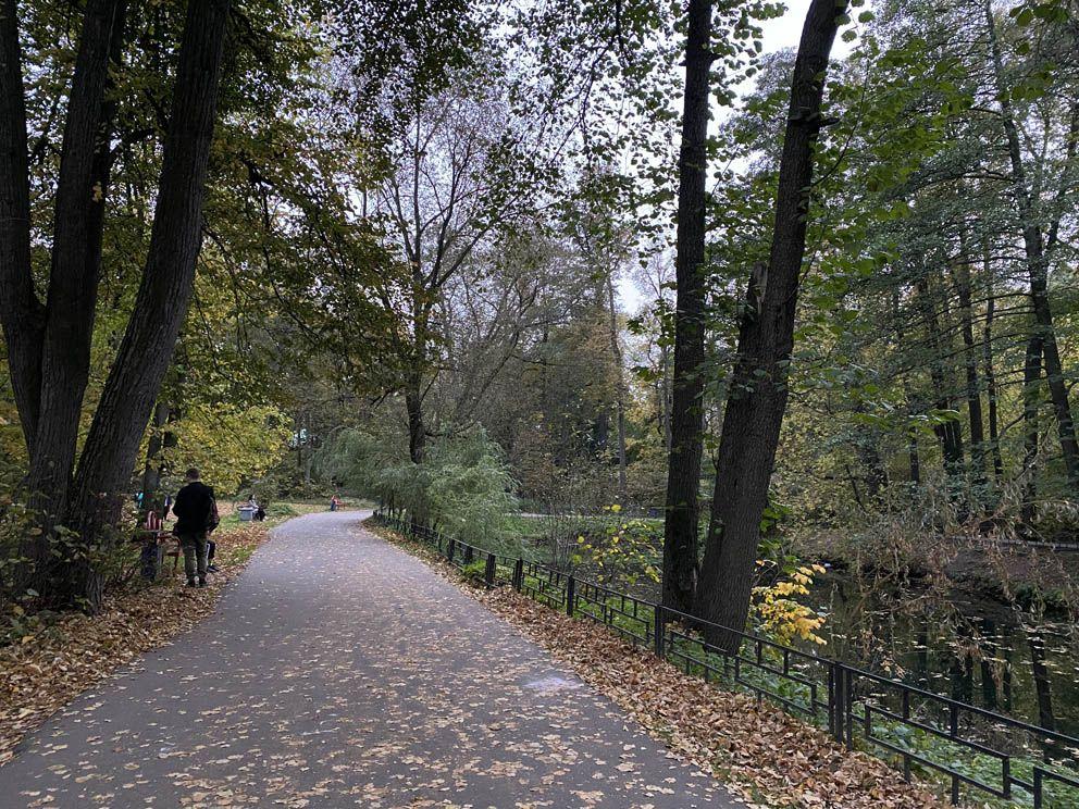 Беговой маршрут вдоль пруда в парке «Кузьминки-Люблино»