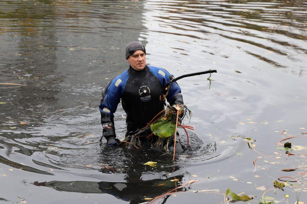 кувшинки, ГУП Мосводосток, зима в Москве, пруд